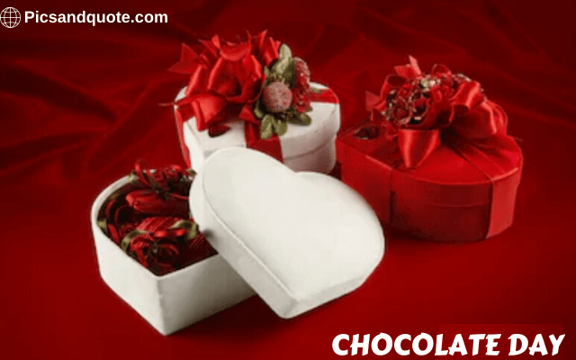 chocolate day images and status