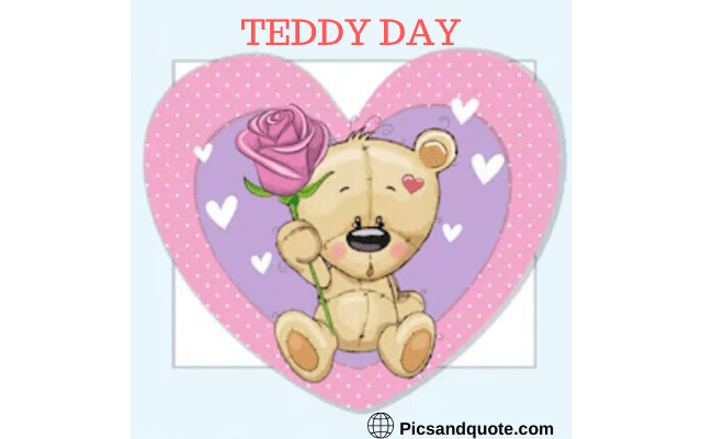 teddy day images for whatsapp dp