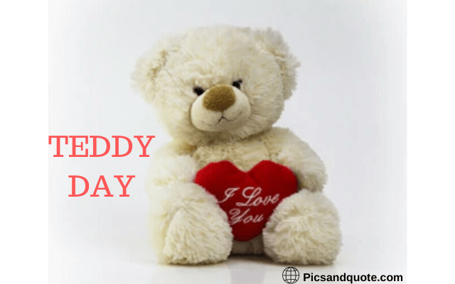 teddy day images good night