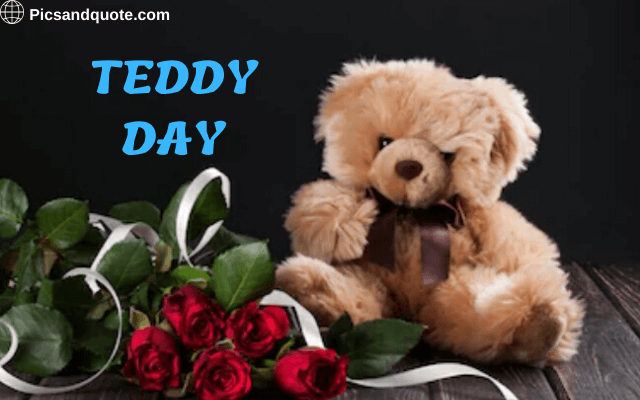 teddy day images download free