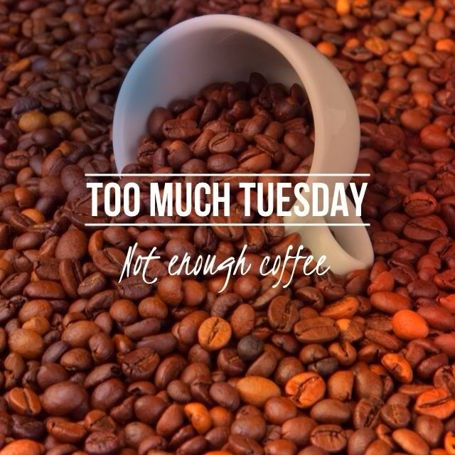 Good Morning Tuesday Wishes Quotes